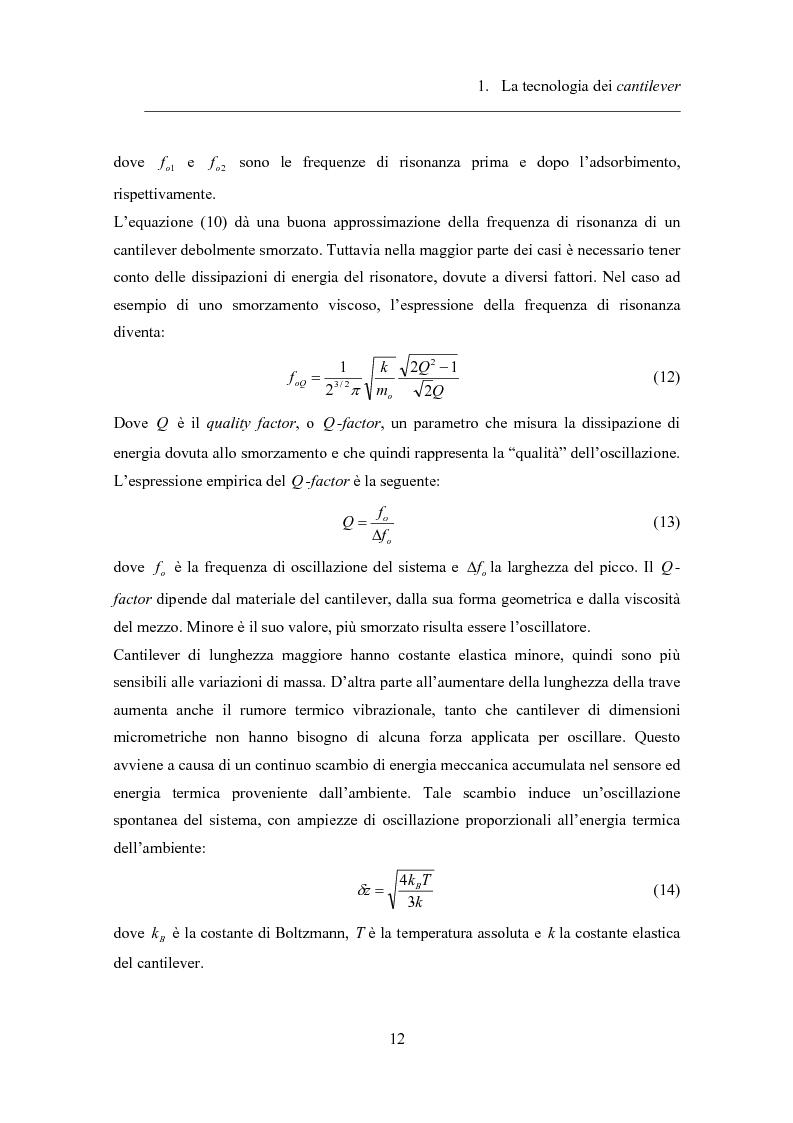 Anteprima della tesi: Twin-cantilevers: un sistema innovativo per la rivelazione dell'ibridizzazione del DNA su singola molecola, Pagina 12