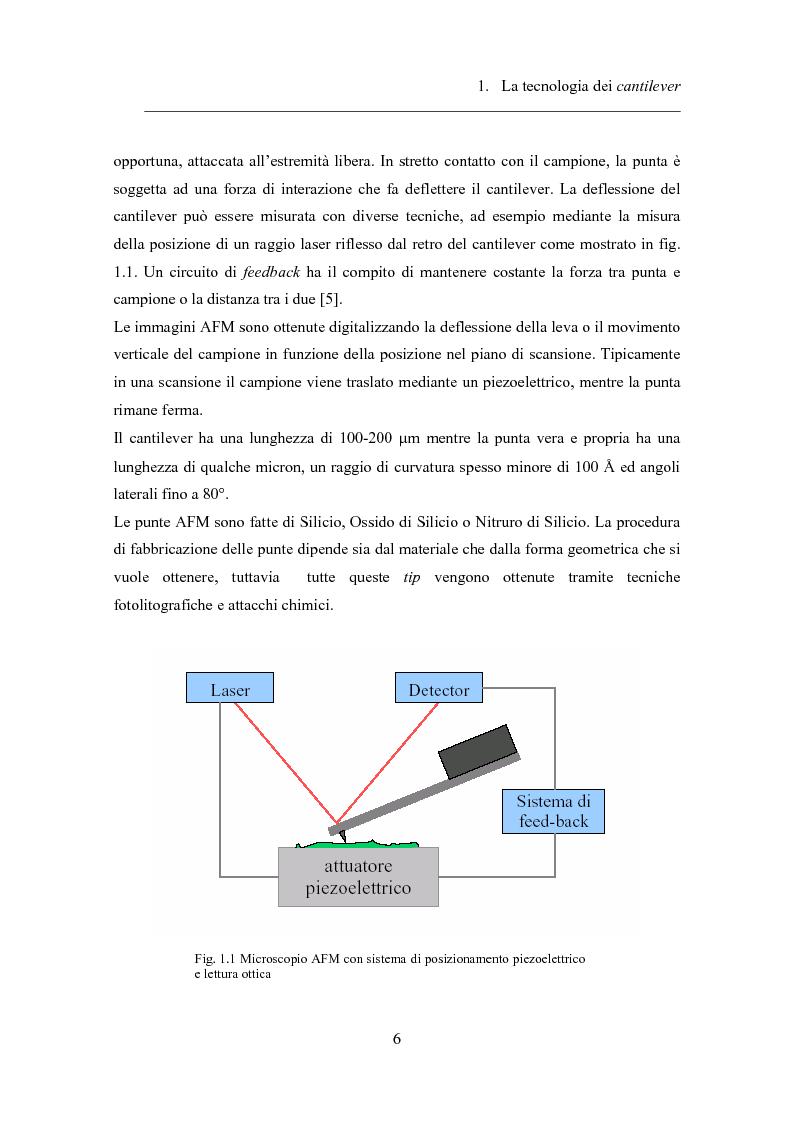 Anteprima della tesi: Twin-cantilevers: un sistema innovativo per la rivelazione dell'ibridizzazione del DNA su singola molecola, Pagina 6