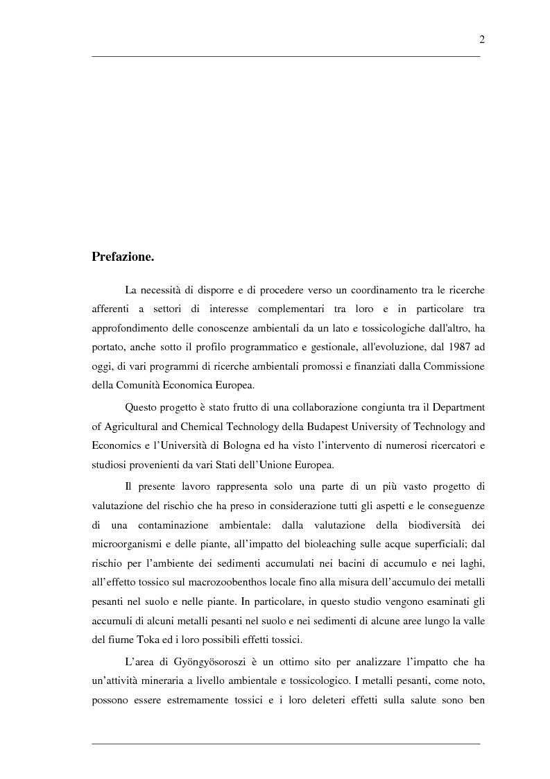 Anteprima della tesi: Caratterizzazione del rischio nella valle del Toka (Ungheria) per contaminazione da metalli pesanti, Pagina 1