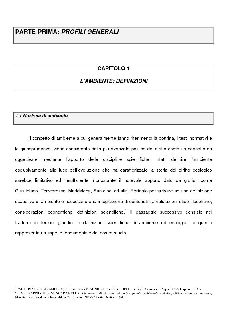 Le nuove forme di criminalit� ecologica - Profili di politica criminale internazionale - Tesi di Laurea