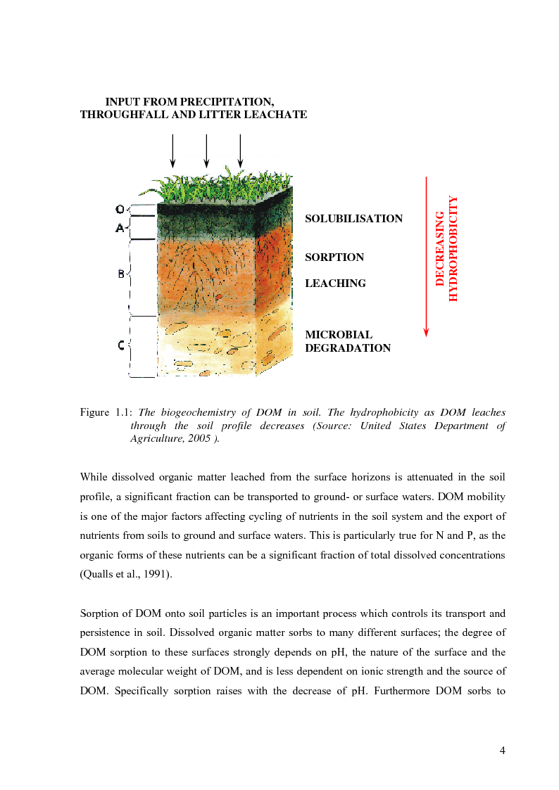 Anteprima della tesi: Mineralization of dissolved organic carbon (DOC) and nitrogen (DON) in the soil solution of different forested stands in Flanders, Pagina 8