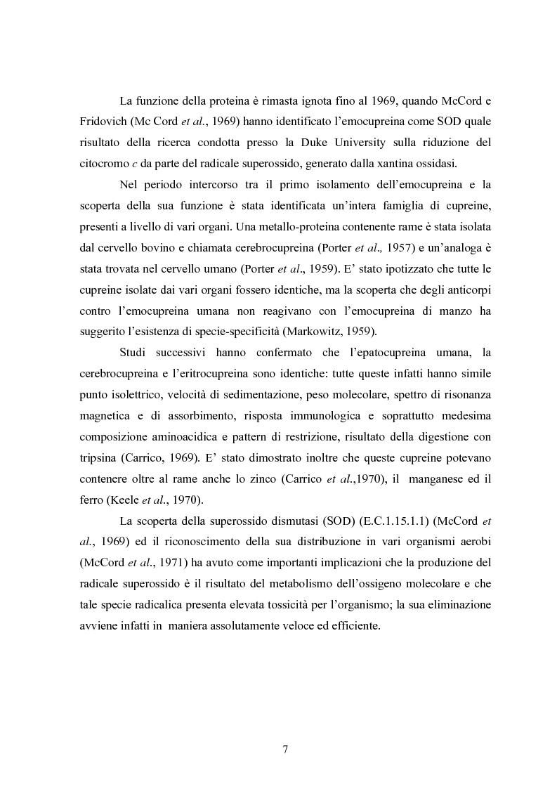 Anteprima della tesi: Studio in chemostato della produzione di superossidodismutasi con kluyveromices Marxianus, Pagina 2