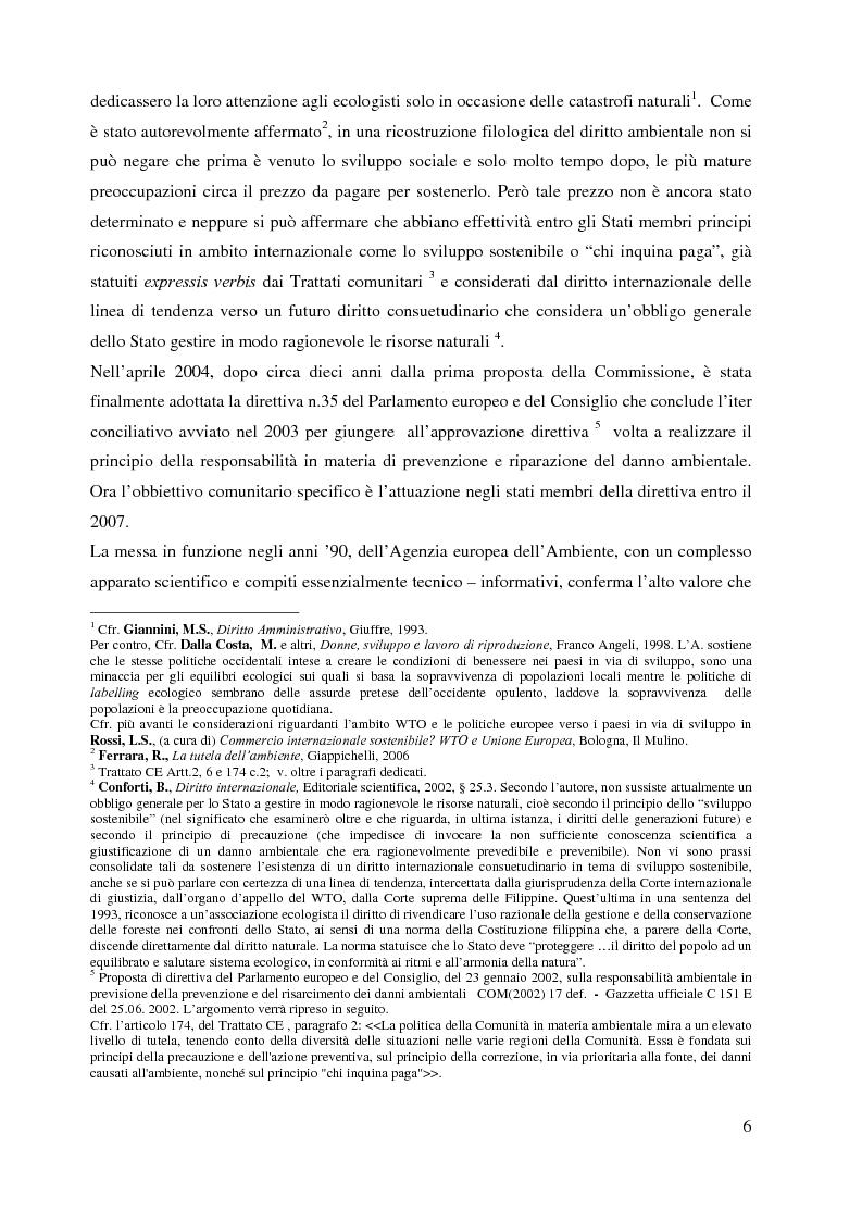 Anteprima della tesi: L'Agenzia Europea dell'Ambiente e il diritto ambientale comunitario, Pagina 6