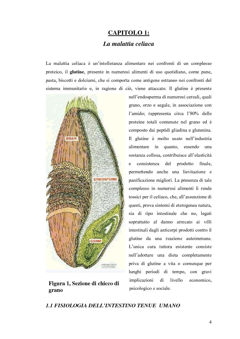 Anteprima della tesi: Metodi usati in laboratorio per la diagnosi della malattia celiaca, Pagina 1