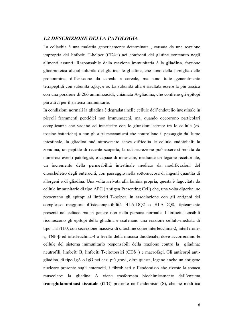 Anteprima della tesi: Metodi usati in laboratorio per la diagnosi della malattia celiaca, Pagina 3