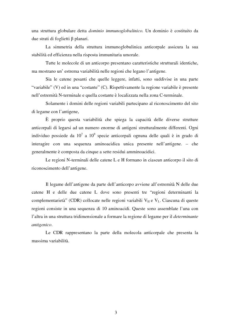 Anteprima della tesi: Produzione di anticorpi monoclonali con scopi diagnostici in ambito veterinario ed alimentare, Pagina 3