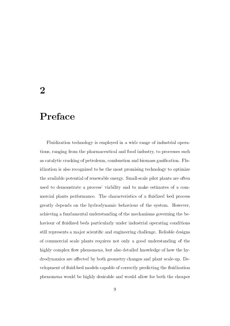 Anteprima della tesi: CFD Modelling of Fluidized Bed Reactors, Pagina 2