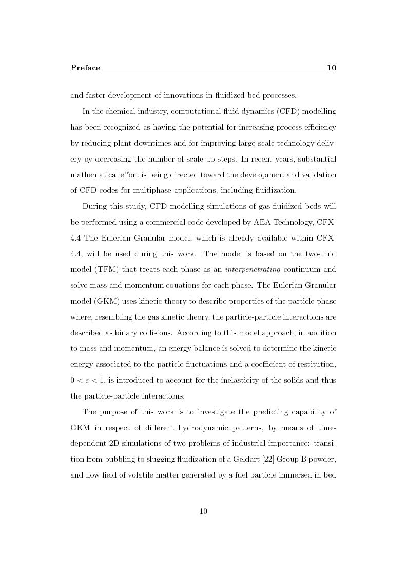 Anteprima della tesi: CFD Modelling of Fluidized Bed Reactors, Pagina 3