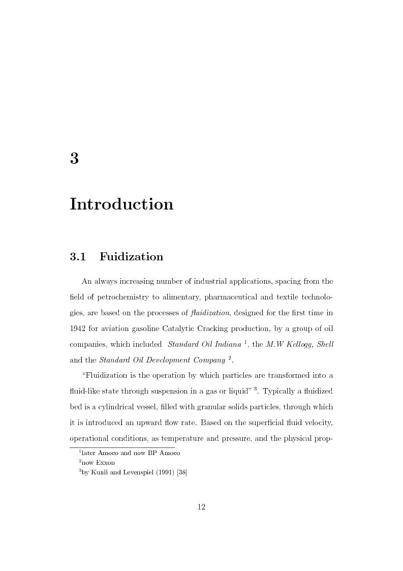 Anteprima della tesi: CFD Modelling of Fluidized Bed Reactors, Pagina 5