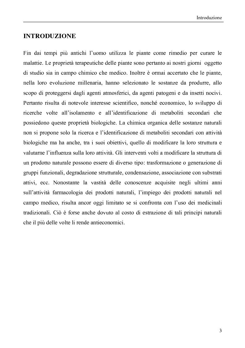 Anteprima della tesi: Metaboliti secondari da Onopordum Illyricum, Pagina 1