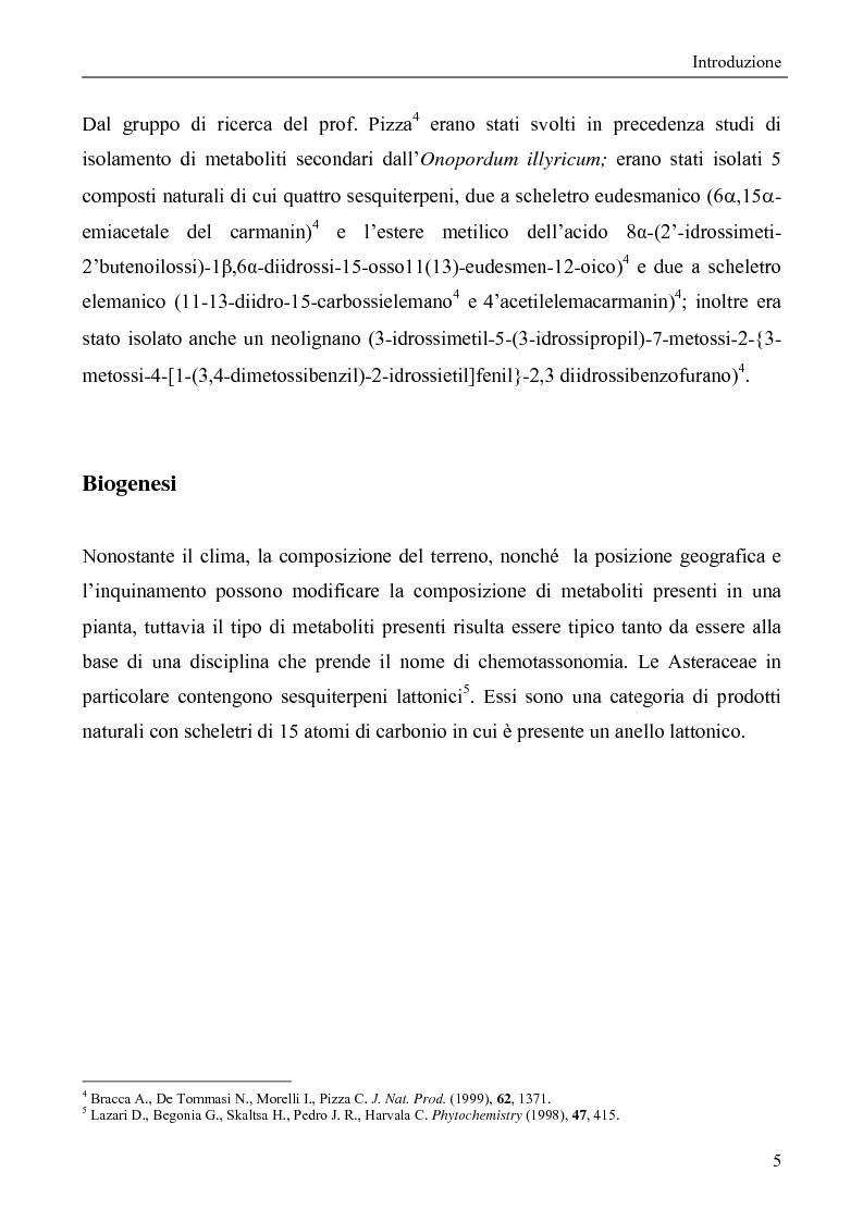 Anteprima della tesi: Metaboliti secondari da Onopordum Illyricum, Pagina 3