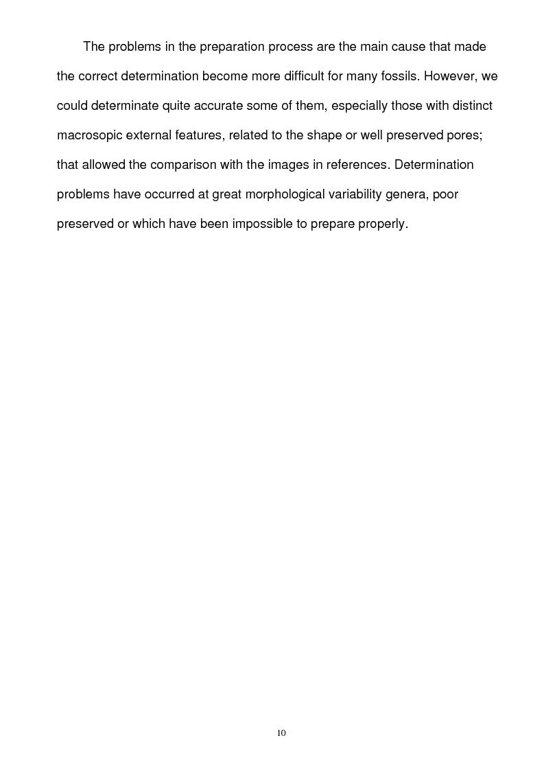 Anteprima della tesi: Paleoecology of Upper Jurassic Sponge Deposits in Western Central Dobrogea, Pagina 4