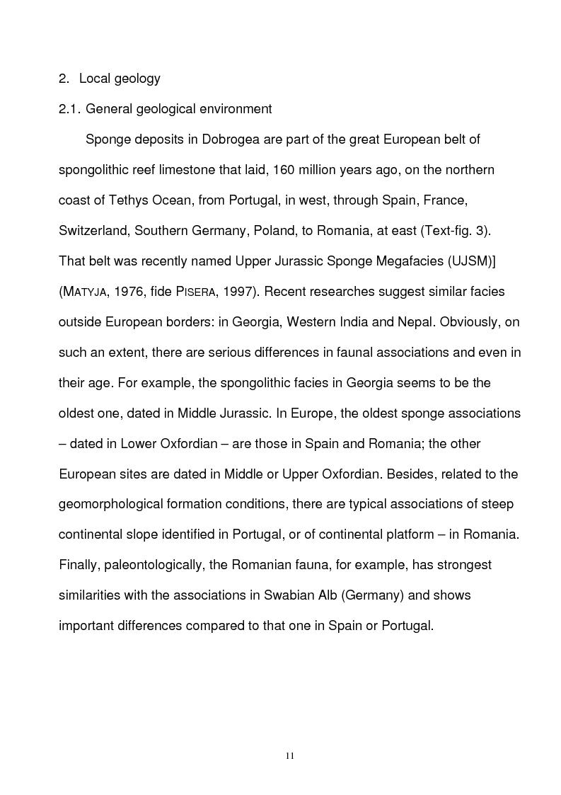 Anteprima della tesi: Paleoecology of Upper Jurassic Sponge Deposits in Western Central Dobrogea, Pagina 5