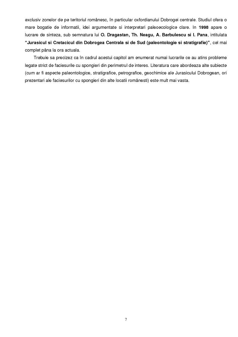 Anteprima della tesi: Faciesul cu spongieri din vestul Dobrogei centrale in Jurasicul superior - interpretari paleoecologice, Pagina 2