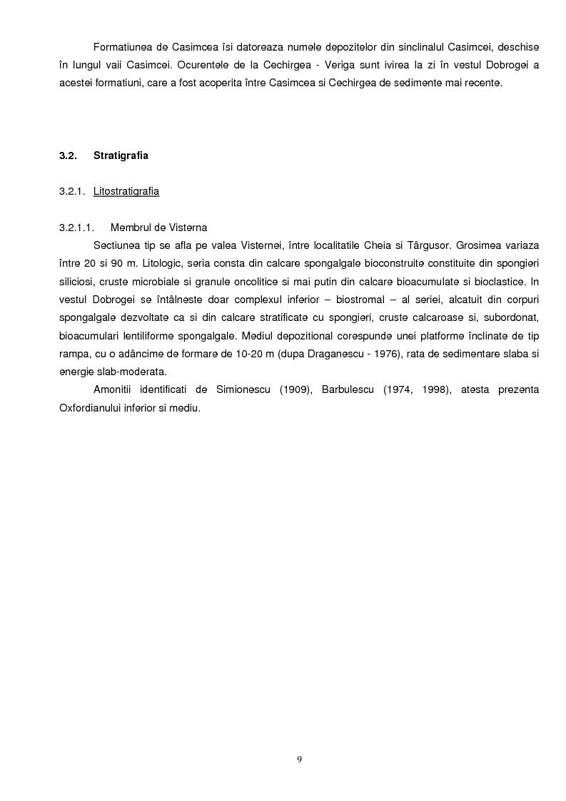 Anteprima della tesi: Faciesul cu spongieri din vestul Dobrogei centrale in Jurasicul superior - interpretari paleoecologice, Pagina 4