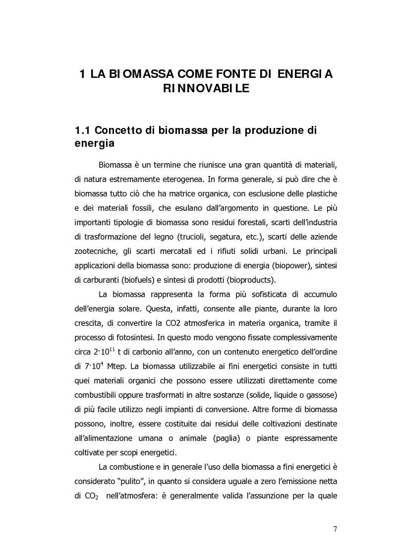 Anteprima della tesi: Valorizzazione energetica di biomassa in un impianto a celle a combustibile, Pagina 3