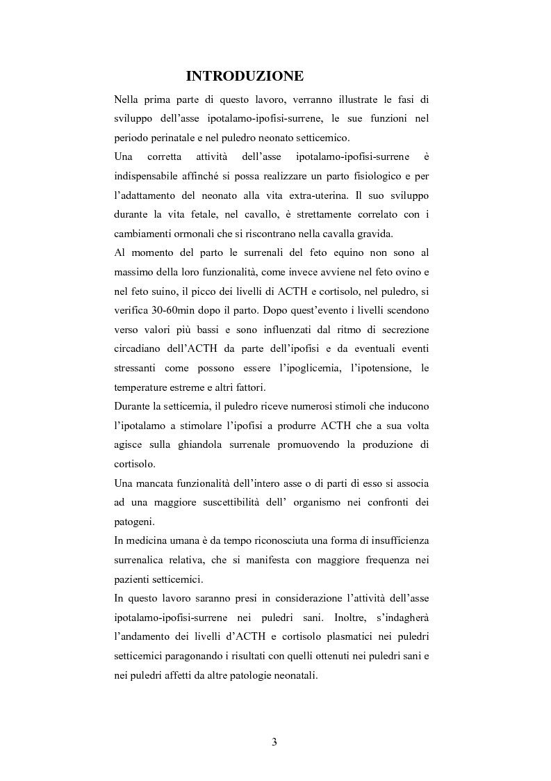 Anteprima della tesi: Andamento dei livelli plasmatici di ACTH e cortisolo nel puledro neonato setticemico, Pagina 1
