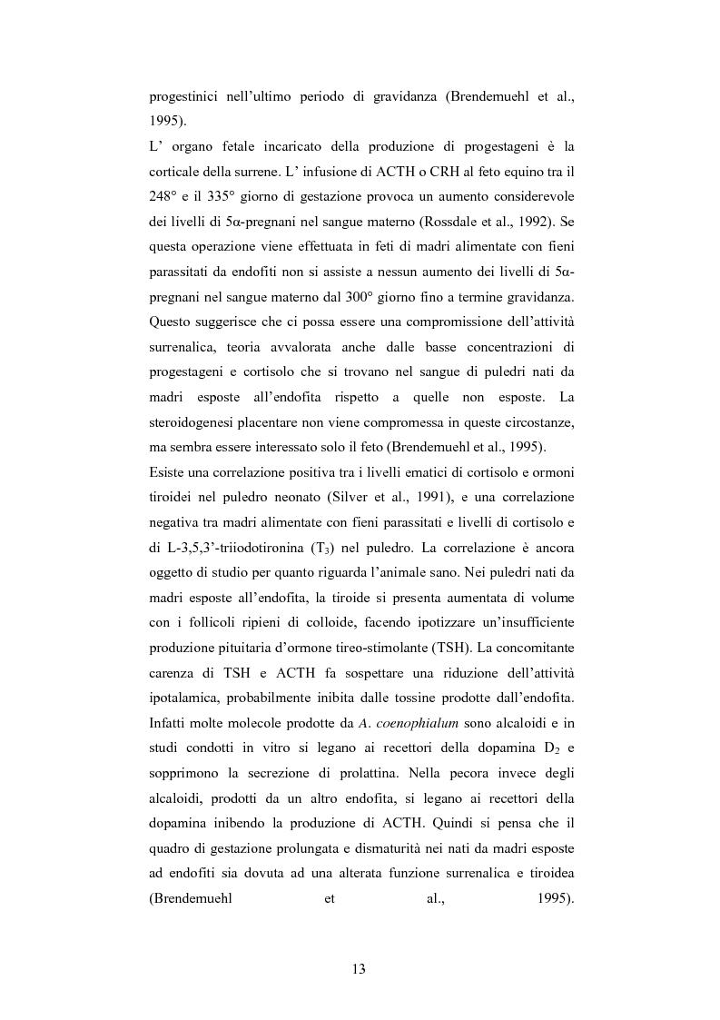 Anteprima della tesi: Andamento dei livelli plasmatici di ACTH e cortisolo nel puledro neonato setticemico, Pagina 11