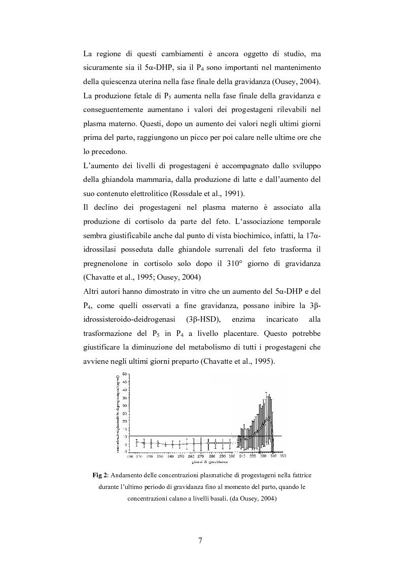 Anteprima della tesi: Andamento dei livelli plasmatici di ACTH e cortisolo nel puledro neonato setticemico, Pagina 5