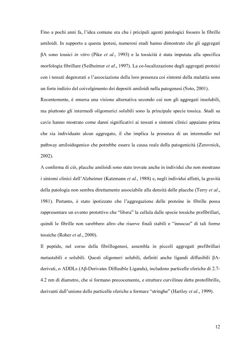 Anteprima della tesi: Studi di citossicità del peptide beta-amiloide (1-40), implicato nel morbo di Alzheimer, su protisti utilizzati come organismi modello, Pagina 6
