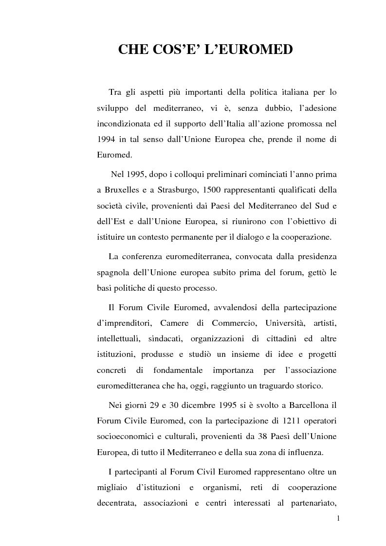 Il partenariato Euromediterraneo - Tesi di Laurea