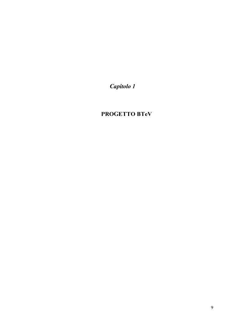 Anteprima della tesi: Scelta dei materiali ed analisi strutturale per supporti di rivelatori di particelle dell'esperimento BTeV a FermiLAB (U.S.A.), Pagina 4