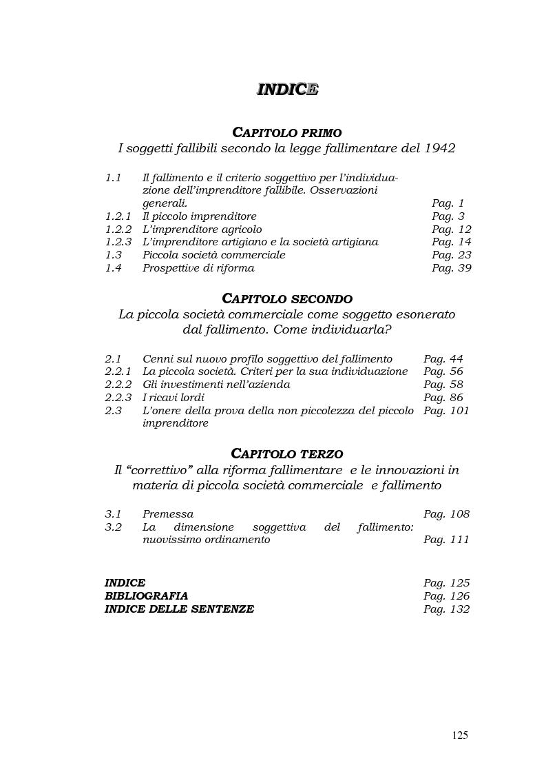Indice della tesi: Piccola società e fallimento, Pagina 1