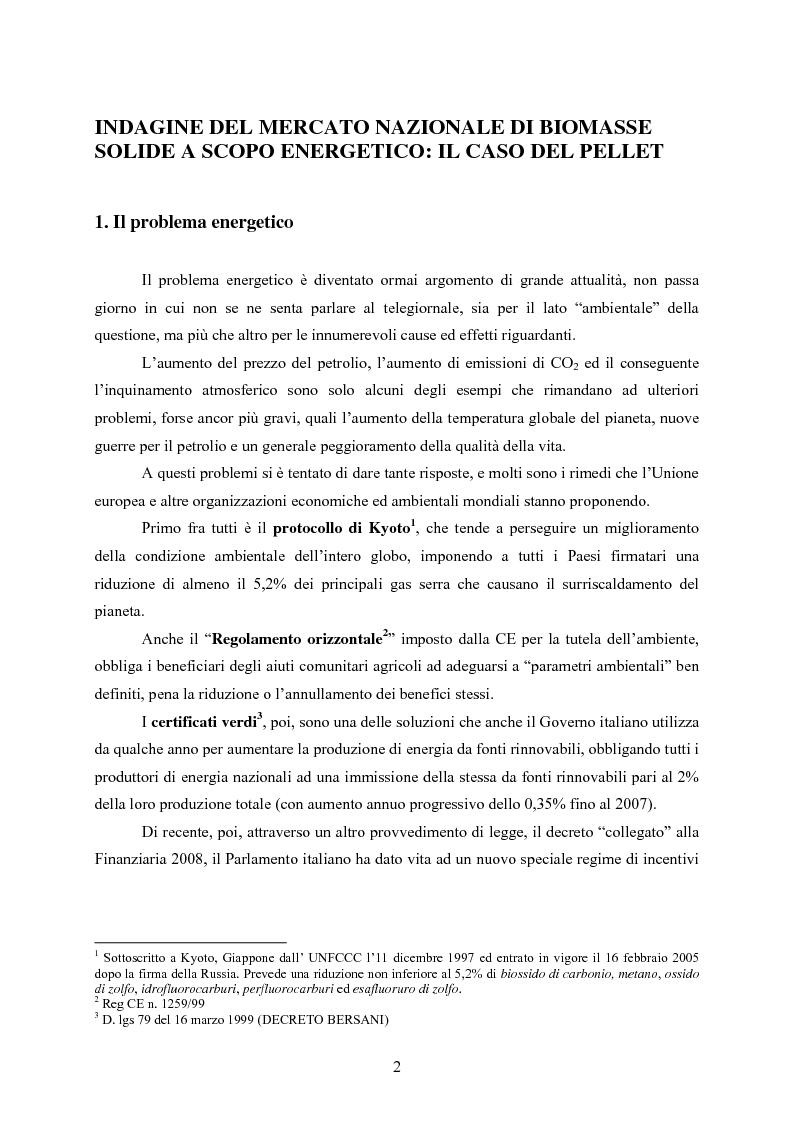 Anteprima della tesi: Indagine del mercato nazionale di biomasse solide a scopo energetico: il caso del pellet, Pagina 1