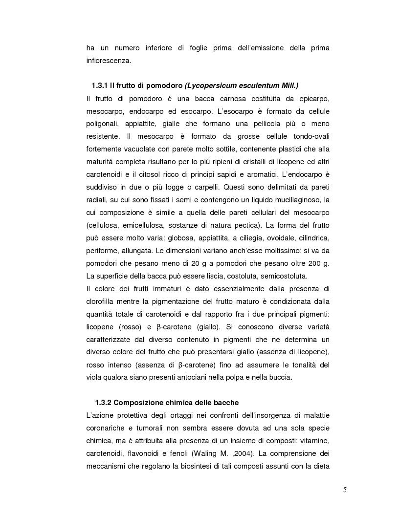 Anteprima della tesi: Pattern isoenzimatico e attività di perossidasi in frutti di pomodoro dela linea HP-1 maturati in presenza o assenza della radiazione UV-B, Pagina 4