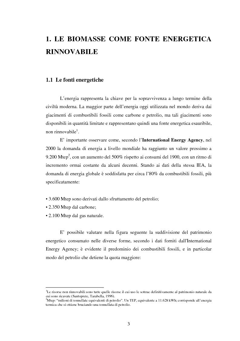 Anteprima della tesi: La sperimentazione di colture energetiche nel Parco dell'Alta Murgia: analisi del processo produttivo della Brassica Carinata, Pagina 1