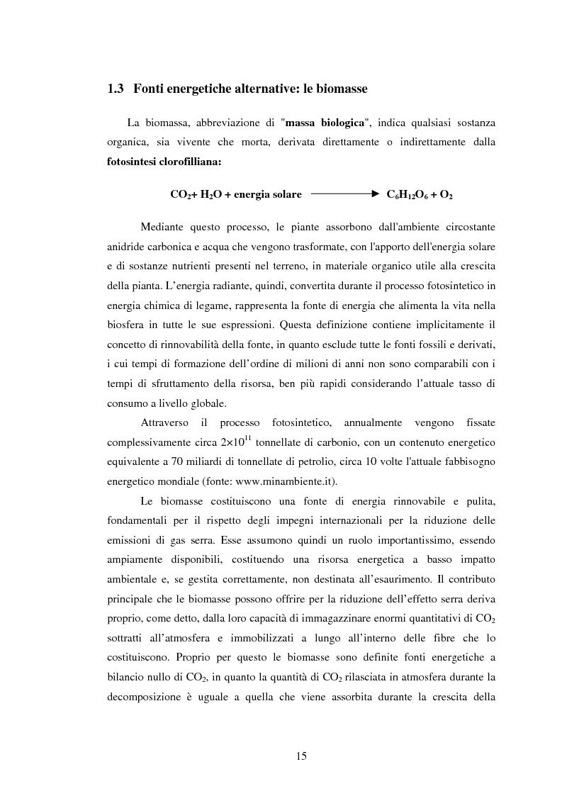 Anteprima della tesi: La sperimentazione di colture energetiche nel Parco dell'Alta Murgia: analisi del processo produttivo della Brassica Carinata, Pagina 13