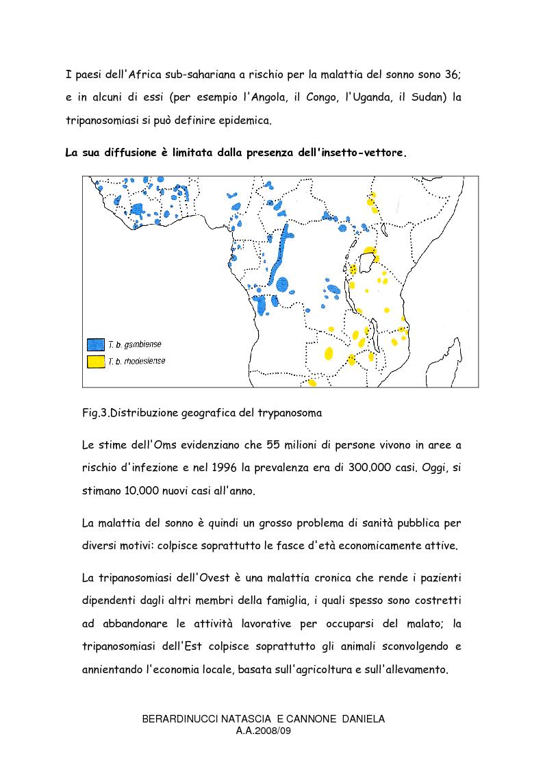 Anteprima della tesi: La trypanosomiasi africana e le complicanze neurologiche, Pagina 6