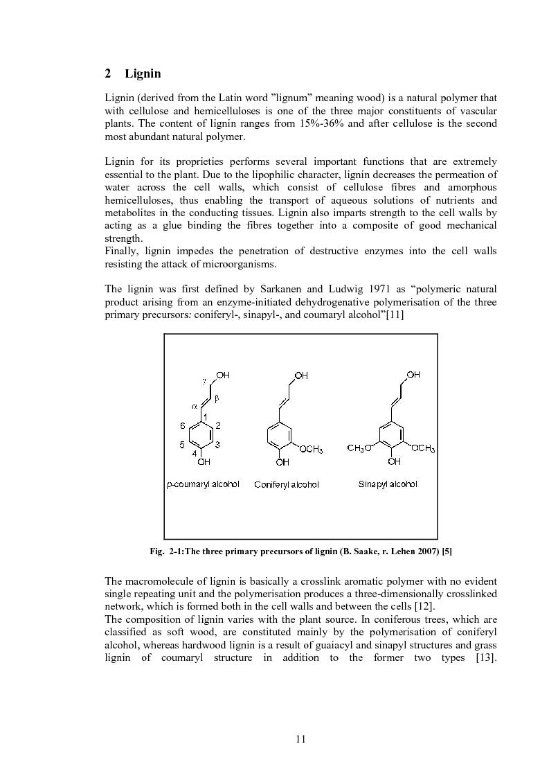 Anteprima della tesi: Produzione di fenoli da cracking catalitico della lignina - Catalytic Hydrocracking of Lignin for Phenols Production, Pagina 10