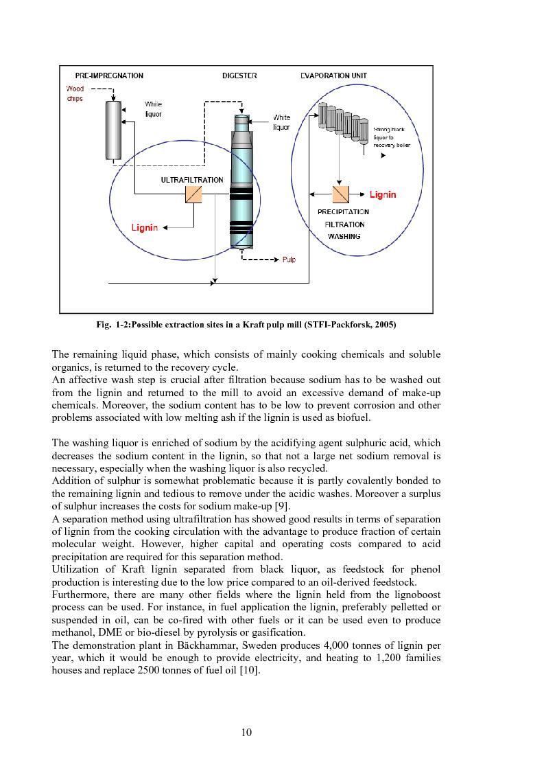 Anteprima della tesi: Produzione di fenoli da cracking catalitico della lignina - Catalytic Hydrocracking of Lignin for Phenols Production, Pagina 9