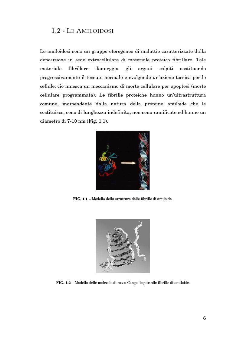 Anteprima della tesi: La gestione delle conoscenze in una rete nazionale di esperti: l'amiloidosi, Pagina 5