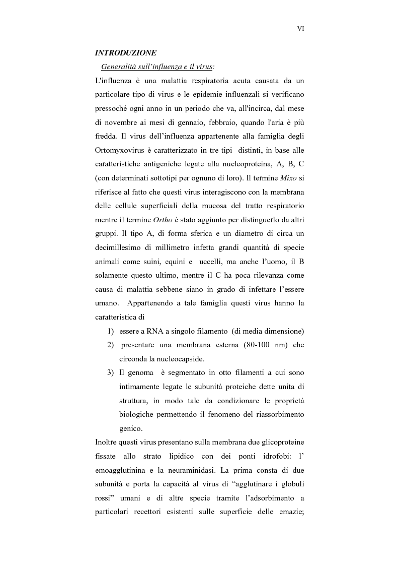 Anteprima della tesi: Studi bioinformatici per la individuazione di regioni di interesse farmacologico della emoagglutinina influenzale, Pagina 2