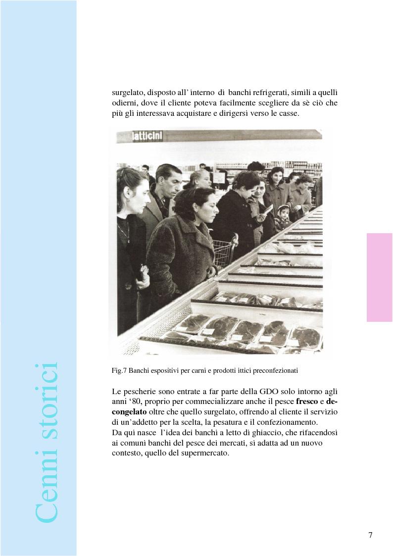 Anteprima della tesi: Iceland: espositore ittico per pesci filettati e colorati, Pagina 10