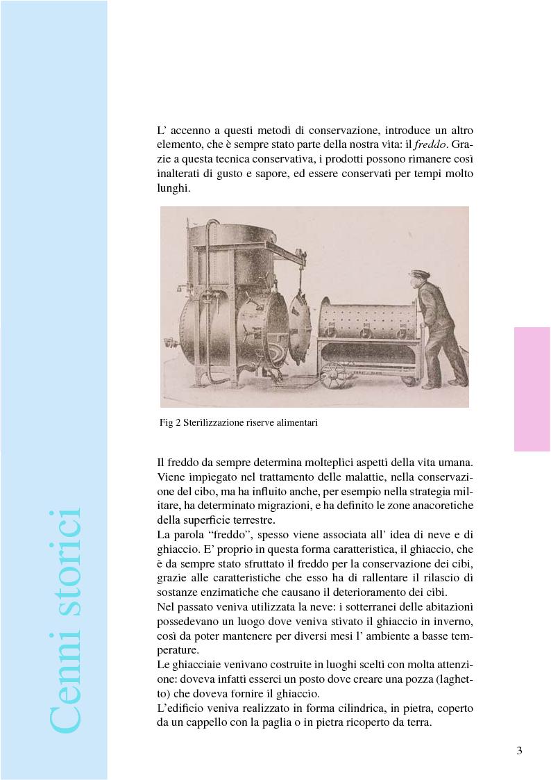 Anteprima della tesi: Iceland: espositore ittico per pesci filettati e colorati, Pagina 6