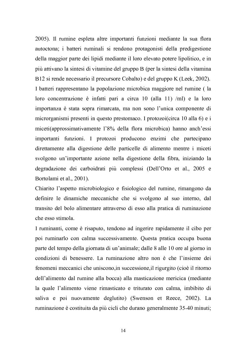 Anteprima della tesi: Valutazione della struttura della fibra in razioni unifeed mediante metodiche di campo, Pagina 10