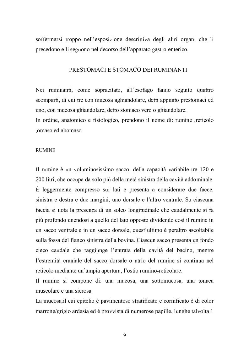 Anteprima della tesi: Valutazione della struttura della fibra in razioni unifeed mediante metodiche di campo, Pagina 5