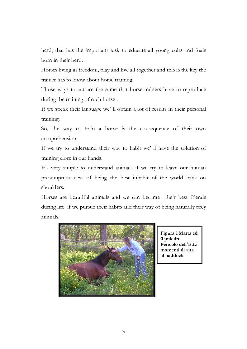 Anteprima della tesi: Imprint Training ed esperienze di addestramento dei puledri presso il Centro Militare Veterinario, Pagina 2