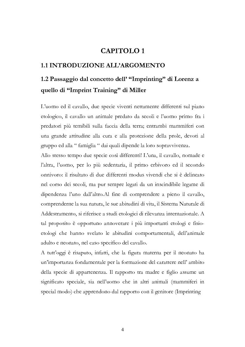 Anteprima della tesi: Imprint Training ed esperienze di addestramento dei puledri presso il Centro Militare Veterinario, Pagina 3