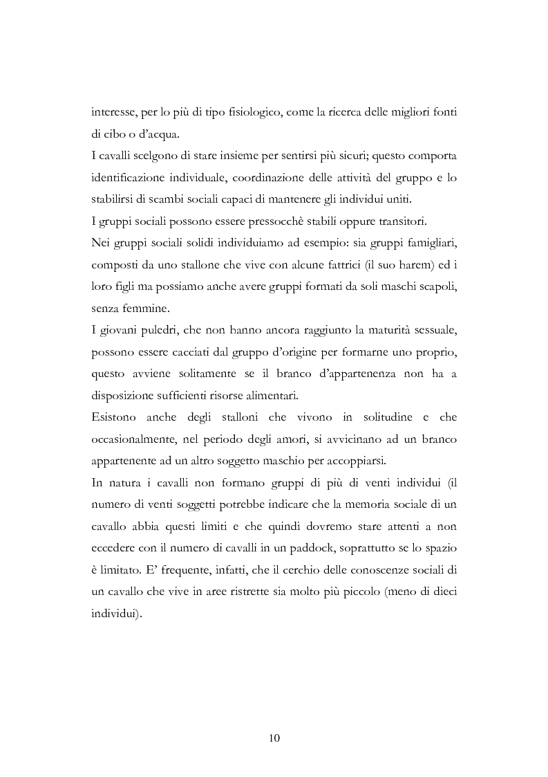 Anteprima della tesi: Imprint Training ed esperienze di addestramento dei puledri presso il Centro Militare Veterinario, Pagina 9