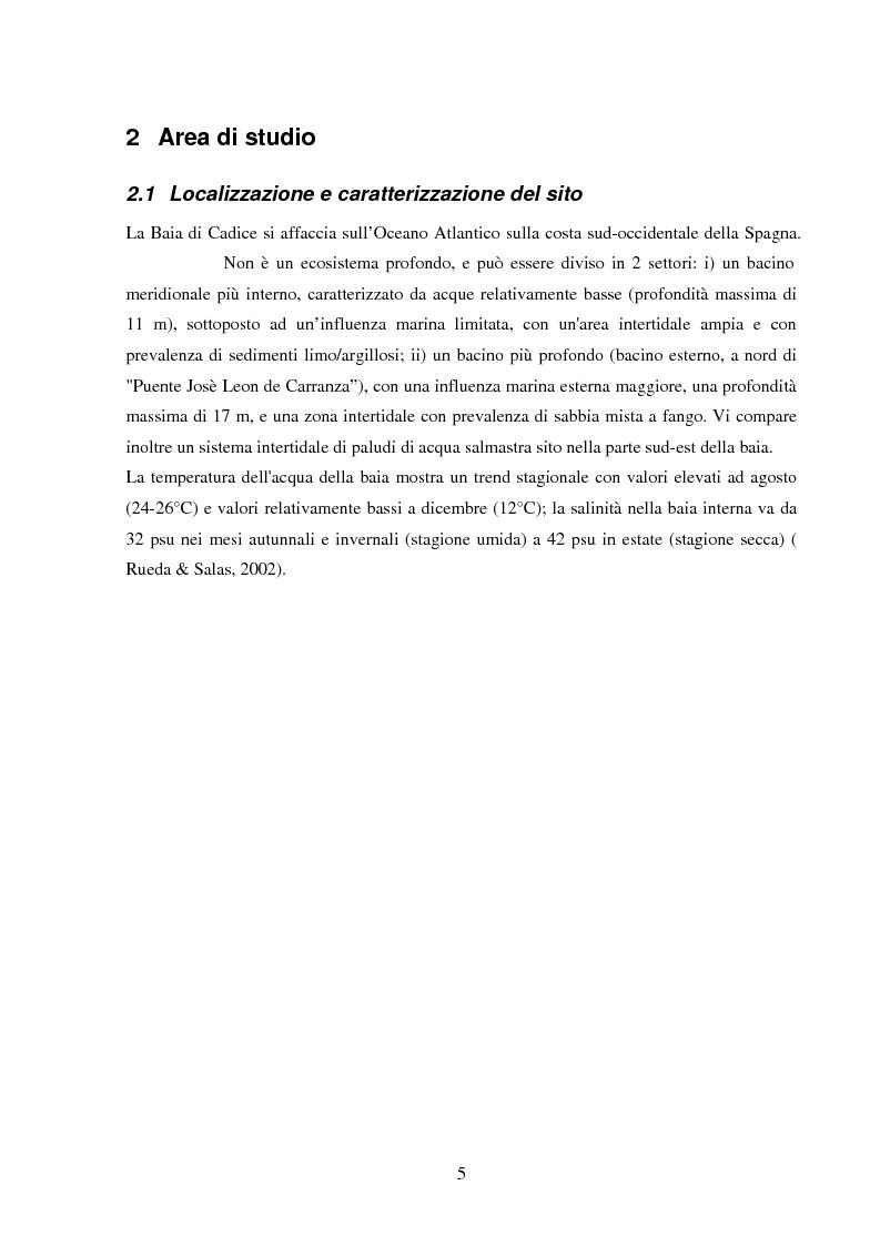 Anteprima della tesi: Struttura di popolamenti meiobentonici associati a differenti coperture vegetali: Caulerpa prolifera/Cymodocea nodosa (Baia di Cadice, Spagna), Pagina 4