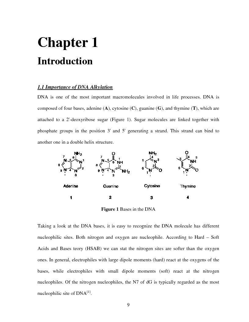 Anteprima della tesi: Selective Delivery of Quinone Methide Precursor QMP by Peptide Nucleic Acids PNAs, Pagina 1