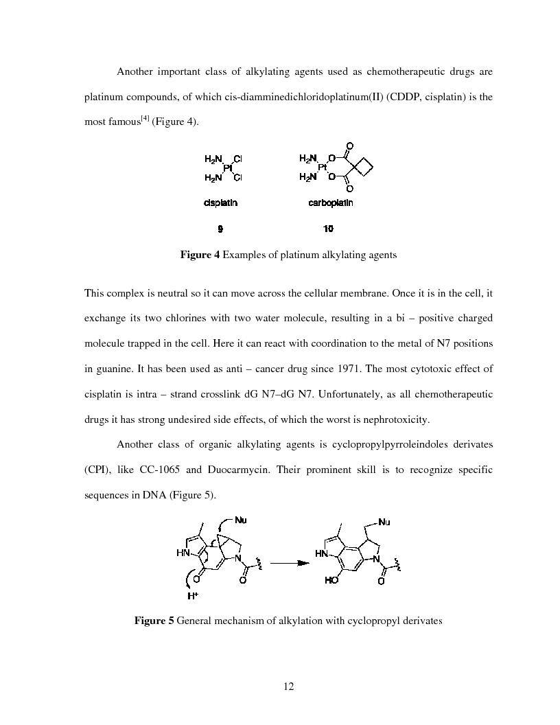 Anteprima della tesi: Selective Delivery of Quinone Methide Precursor QMP by Peptide Nucleic Acids PNAs, Pagina 4