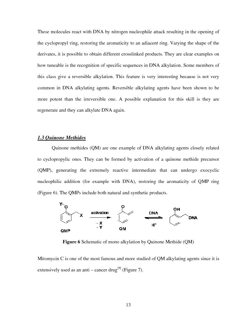 Anteprima della tesi: Selective Delivery of Quinone Methide Precursor QMP by Peptide Nucleic Acids PNAs, Pagina 5
