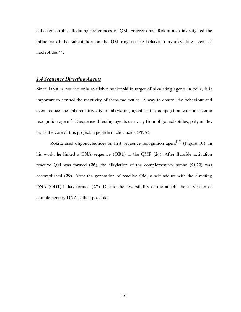 Anteprima della tesi: Selective Delivery of Quinone Methide Precursor QMP by Peptide Nucleic Acids PNAs, Pagina 8