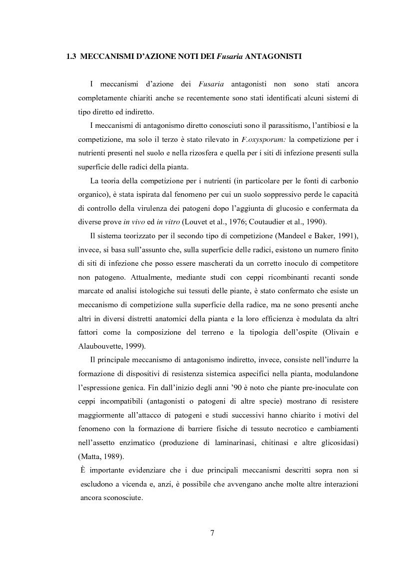 Anteprima della tesi: Composti organici volatili come meccanismo di antagonismo a lunga distanza in Fusarium oxysporum, Pagina 4