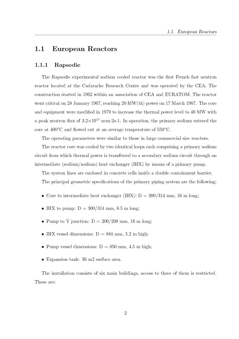 Anteprima della tesi: Innovative Steam Generator for Sodium-Cooled Fast Reactors, Pagina 2